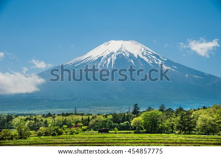 Beautiful view Mt.Fuji with snow, blue sky and fresh grass in summer at Yamanashi, Japan.