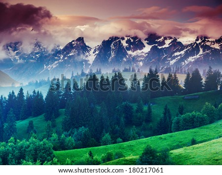 Beautiful view of alpine meadows. Creative collage. Beauty world. - stock photo