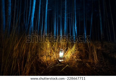 Beautiful view of dark forest at night lit by old gas lamp - stock photo