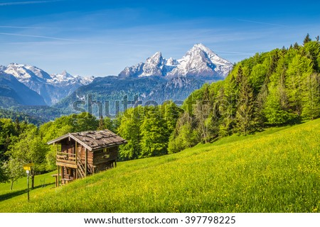 Beautiful view of idyllic mountain scenery in the Alps with fresh green mountain pastures with blooming flowers and old traditional mountain lodge in springtime - stock photo