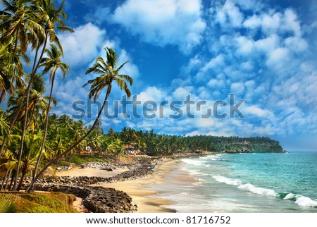 Beautiful view of Odayam beach near ocean and palm trees in Varkala, Kerala, India - stock photo