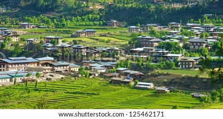 Beautiful view of rice fields and traditional houses, Bhutan