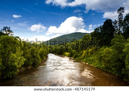 Beautiful view of river in Ukrainian Carpathians.