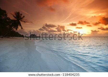 Beautiful view of sea and empty beach with palms on sunset - stock photo