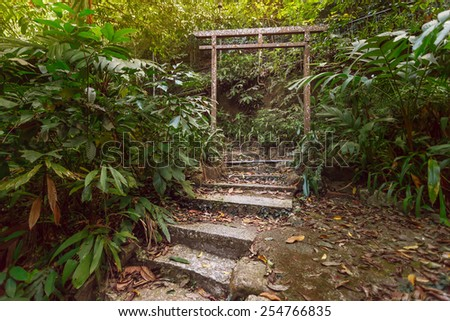 Beautiful view of stairway with china arch to jungle. Malaysia. - stock photo