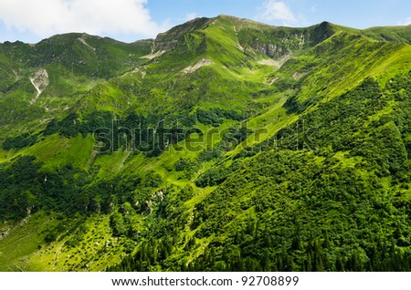 beautiful view of summer green mountains - stock photo