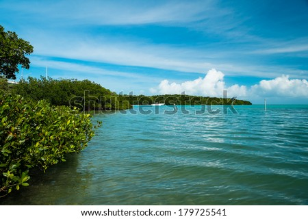 Beautiful view of the Florida Keys with boat cruising by. - stock photo