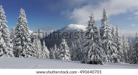 Beautiful view of the mountains. Carpathian mountains. Ukraine. Europe.