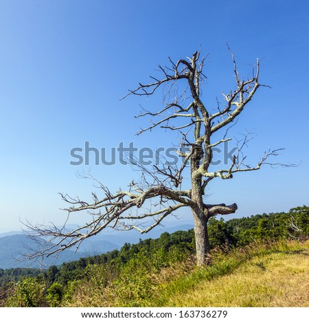 Beautiful view of the popular Blue Ridge  Mountain in Shenandoah national park - stock photo