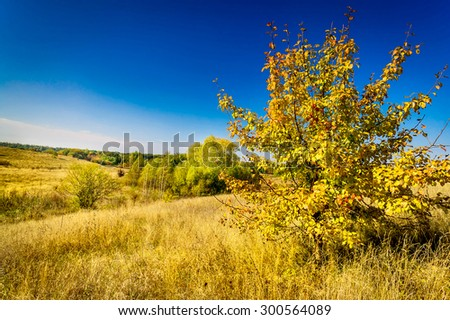 Beautiful view of the rural landscape. - stock photo