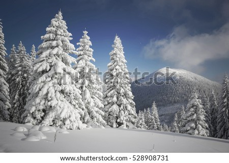 Beautiful view of the winter mountains