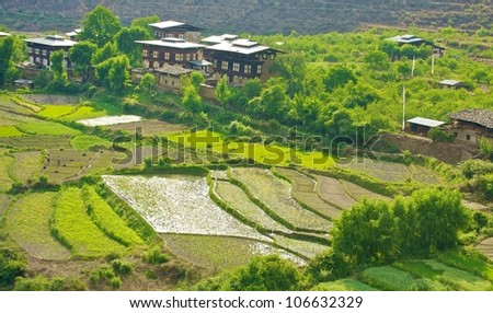 Beautiful view of traditional Bhutanese Houses in Paro Valley, Bhutan