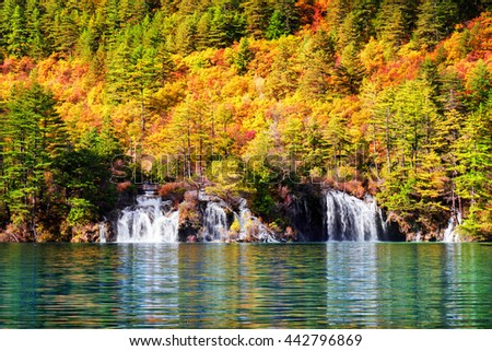 Beautiful view of waterfalls and lake with crystal clear water among colorful fall woods at sunny day, Jiuzhaigou nature reserve (Jiuzhai Valley National Park), China. Amazing autumn forest landscape. - stock photo