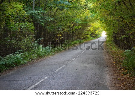 Beautiful view on the natural green tunnel  - stock photo
