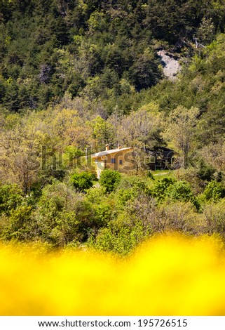 Beautiful view through blurred yellow rape flowers. Farmhouse at backgrounds. Provence, France. - stock photo