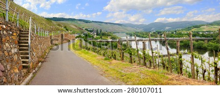 beautiful view to vineyards at mosel river. spring landscape saarland, germany - stock photo