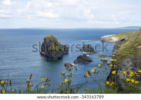 beautiful views over the coastal rocks with wild tall grass on the wild atlantic way - stock photo