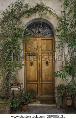 Beautiful Vine Covered Doorway in the Medieval Village of Buonconvento, Italy - stock photo