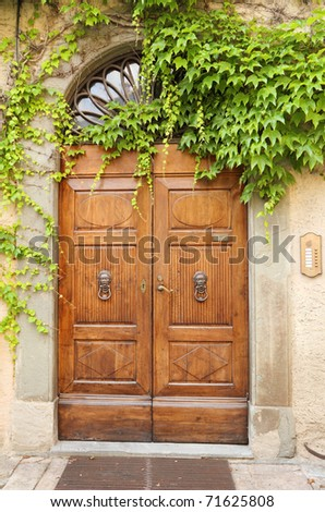 beautiful vintage door and creeper,Tuscany, Italy, Europe - stock photo