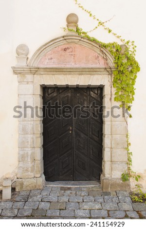 beautiful vintage door and creeper,Vasteras, Sweden, Europe  - stock photo