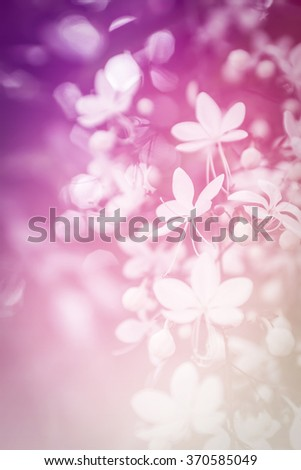 Beautiful Vintage Flowers - stock photo