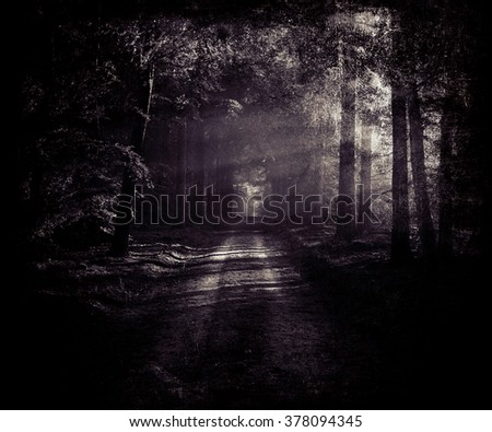 Beautiful vintage mystical photo of country road, dark forest landscape