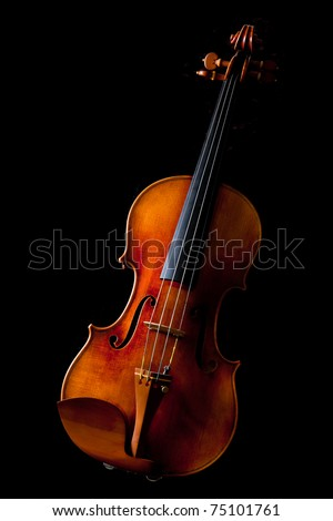 Beautiful vintage violin on black background - stock photo