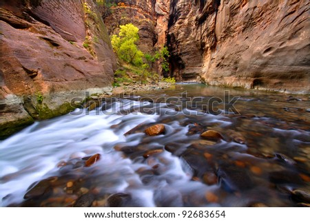 Beautiful Virgin River flows through The Narrows of Zion Canyon in Utah