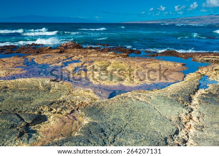 Beautiful volcanic lava beach in Hawaii - stock photo