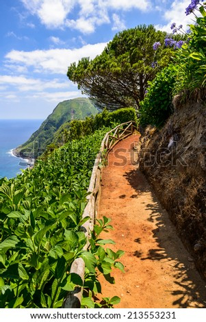Beautiful walking road near the Atlantic Ocean, Azores, Portugal, Europe - stock photo