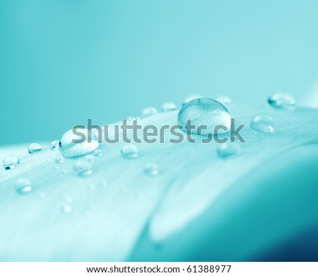 Beautiful water drop on a blue background - stock photo
