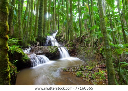 Beautiful water fall flowing through a serene tropical rain palm forest - stock photo