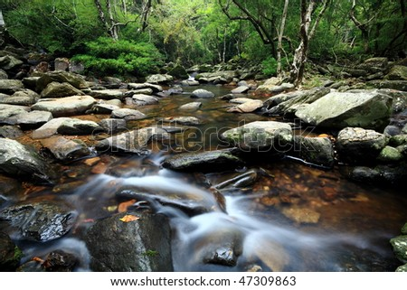 beautiful water spring in forest, long exposure