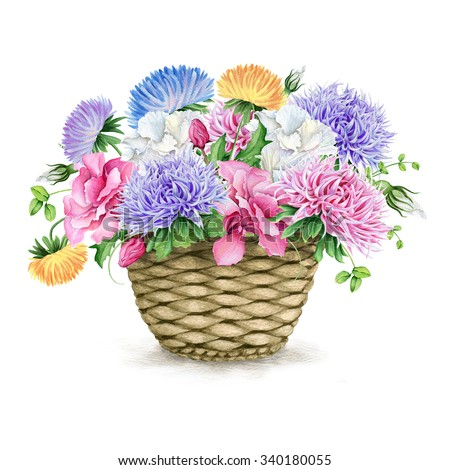 Beautiful watercolor basket with asters and camellias - stock photo