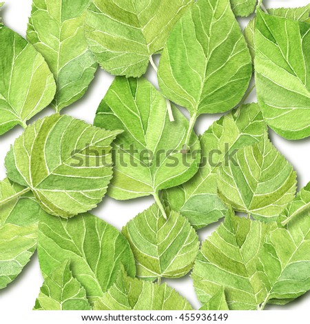 Beautiful watercolor green leaves with realistic shadows on white backdrop, seamless background. Floral repeating pattern.