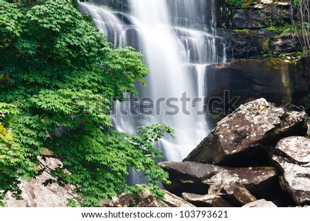 Beautiful waterfall and green maple tree in rain forest  at Thailand. - stock photo