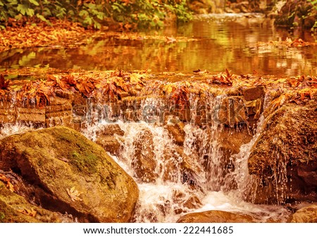 Beautiful waterfall in autumnal park, dry orange foliage in the river flowing on stones in forest, autumn season concept - stock photo