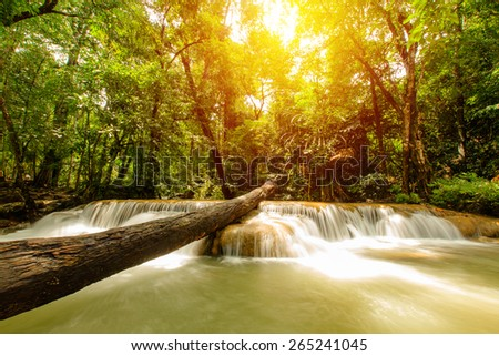 Beautiful waterfall in deep forest. - stock photo