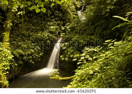 Beautiful waterfall in nature. The cotton like flow of the water gives a very peaceful and natural look with intact nature around. The green foliage leaves room for your copy. - stock photo