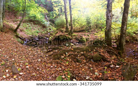 beautiful waterfall scene, ukraine carpathian shipot waterfall - stock photo