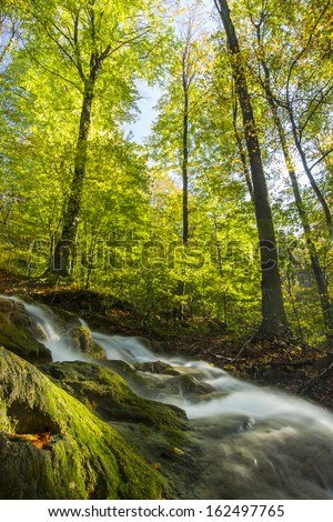 Beautiful waterfalls in the forest on a sunny autumn day
