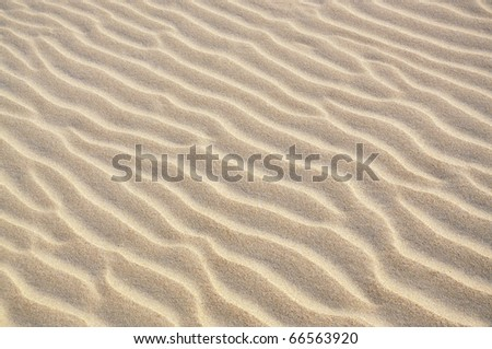 Beautiful wave patterns found in a sand dune in the desert - stock photo