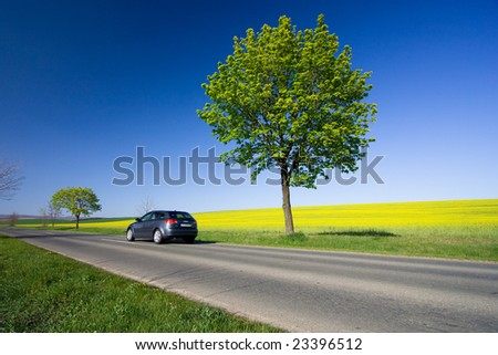 Beautiful weather 8. - beautiful day. Yellow field with blue car - stock photo