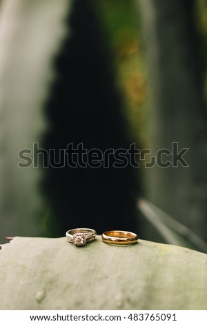 Beautiful Wedding Rings Posed with Nature Green Background