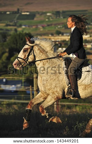 Beautiful, well dressed woman galloping on a horse. - stock photo