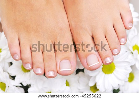 Beautiful well-groomed female feet with the French pedicure and flowers on background - stock photo