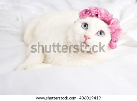 Beautiful White Cat with Blue Eyes and Flower Headband Relaxing on Belgian Linen Sheets - stock photo