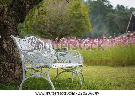 Beautiful white chairs under tree in garden, Thailand - stock photo
