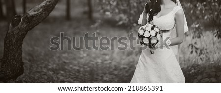 Beautiful white dress. Long veil  - stock photo