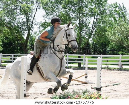 Beautiful white horse jumping hurdles - stock photo